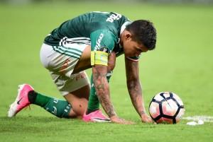 Dudu, Palmeiras x Penarol, Libertadores 2017, Palestra Italia, Sao Paulo SP, 12/04/2017, Foto: Fernando Dantas/Gazeta Press