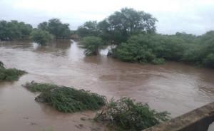 rio jacuípe gavião